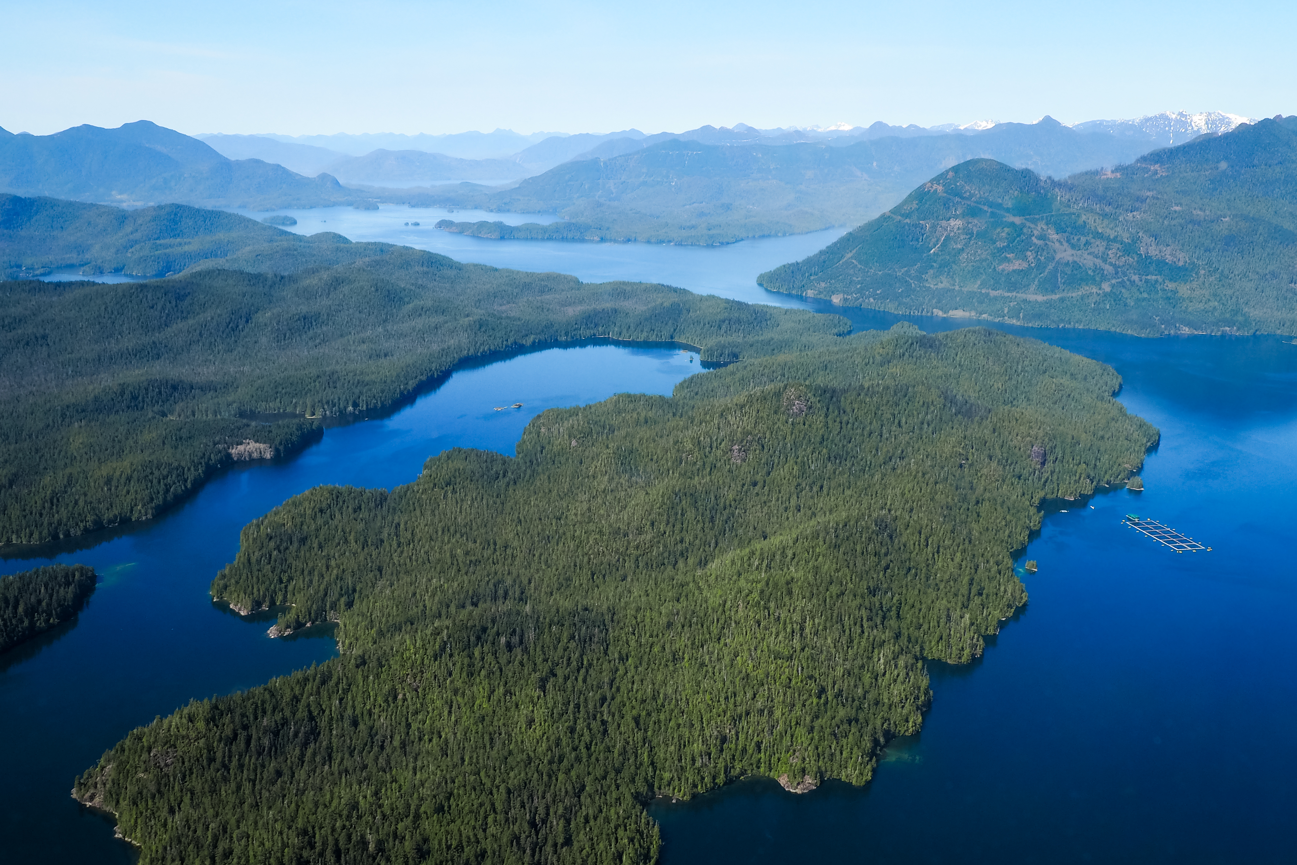 Canada Goose trip to Tofino Vancouver Canada