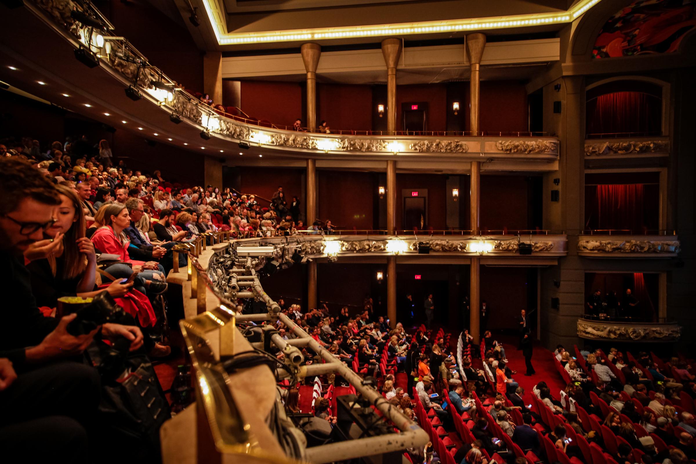 Toronto International Film Festival with canada goose